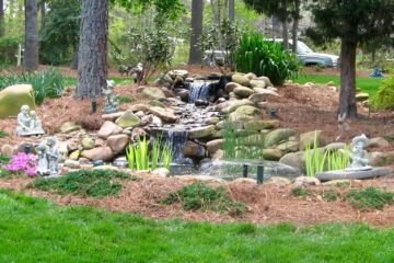 Pond, shah, water feature